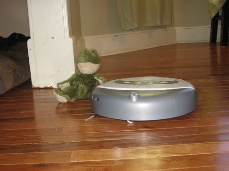 Roomba and her frog friend